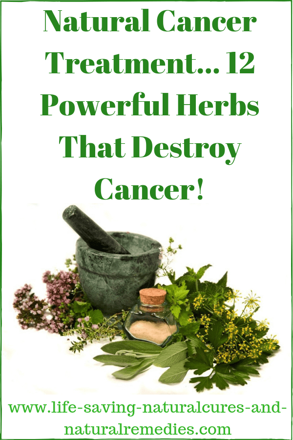 Natural Cancer Treatment - Powerful Herbs That Destroy Cancer!