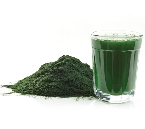 Chlorella for Treating MS