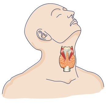 Best Natural Remedies For Treating Hyperthyroidism