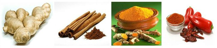 Ginger, cinnamon, turmeric and cayenne pepper for cancer prevention and treatment